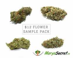 Wholesale Dispensary Canada- Marys Secret