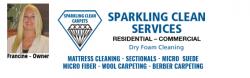 Sparkling Clean Carpets